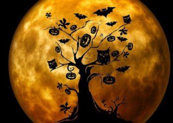 halloween-959048_1280