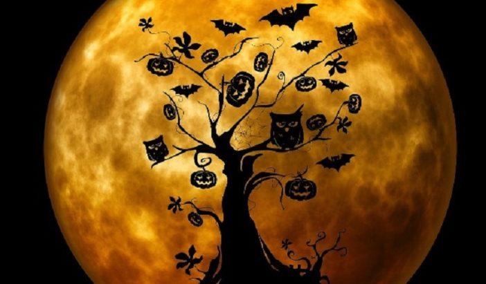 Halloweenský rej 30. 10. 2019